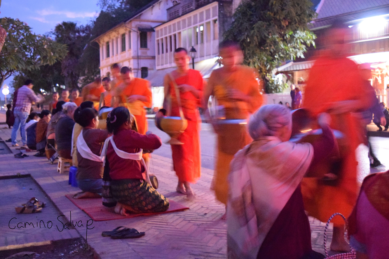 Ofrendas Luang Prabang