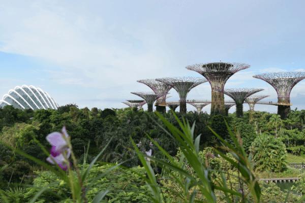 Singapur, lo que necesitas saber para tu visita
