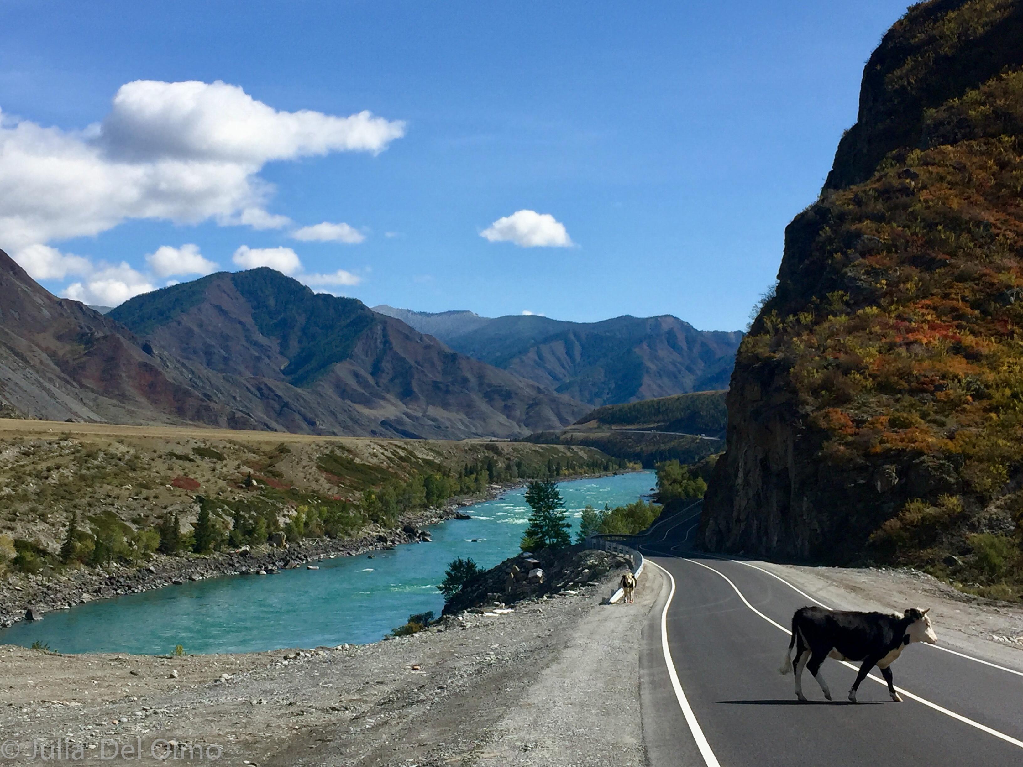 Ríos turquesa de Altai