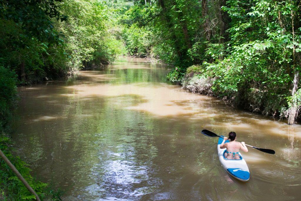 Remando en el Delta del Paraná