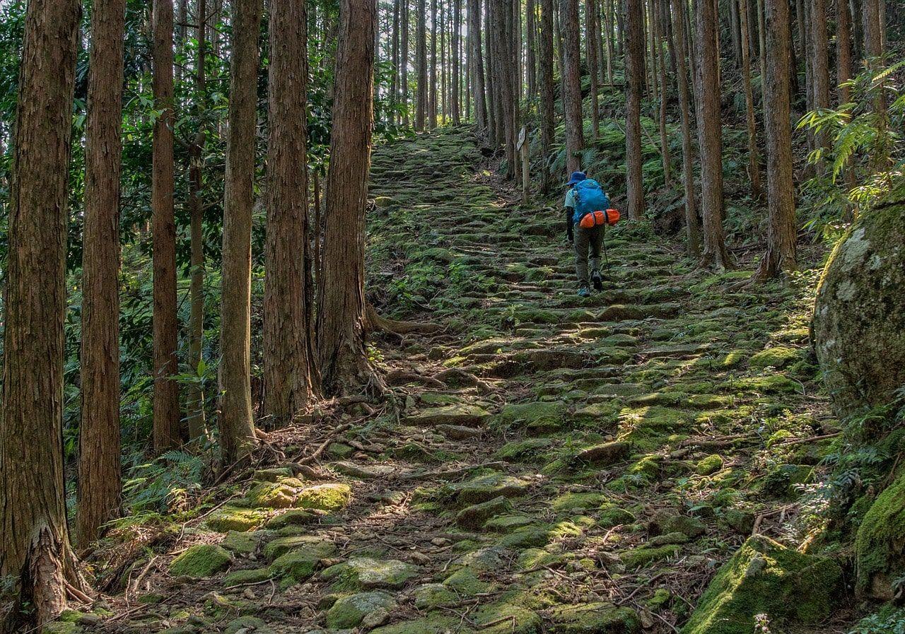 Camino Kumano Kodo